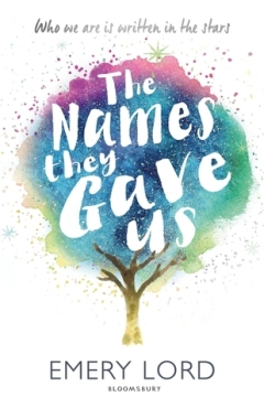 https://heartfullofbooks.com/2017/05/07/review-the-names-they-gave-us-by-emery-lord/